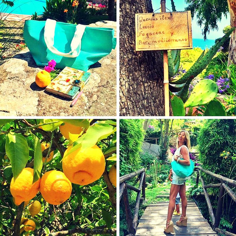 """La mia isola d'Elba:""""un giardino botanico sul mare"""""""