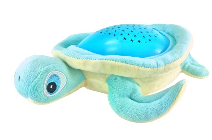 TP618--Blue-Turtle